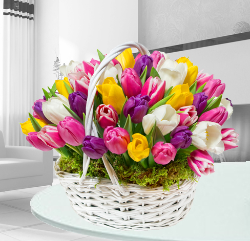 Dodatkowe 50 Tulipanów w Koszu- ON73