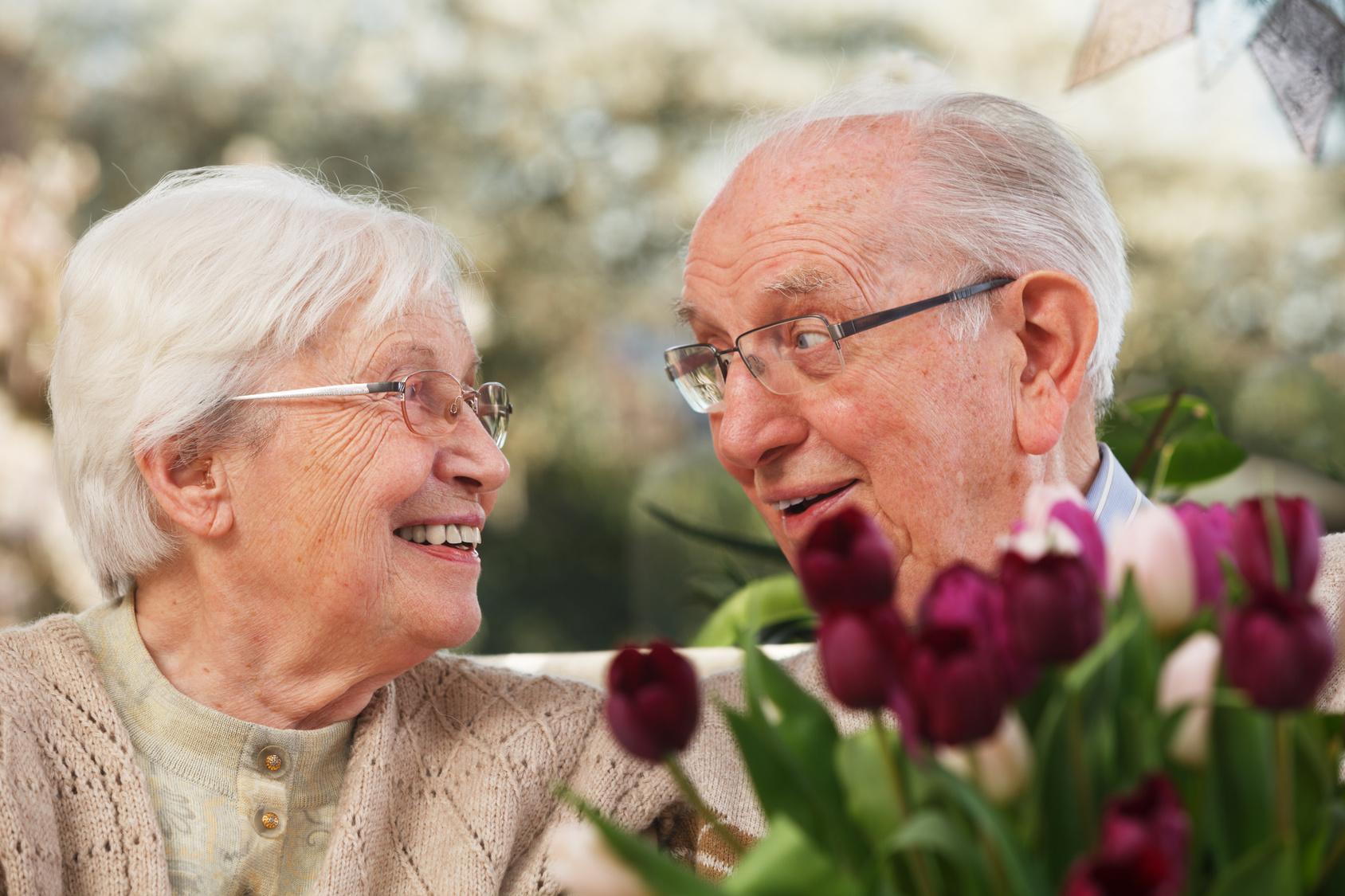 Kwiaty Na Dzien Babci Jakie Wybrac Na Prezent Blog 123kwiaty Pl