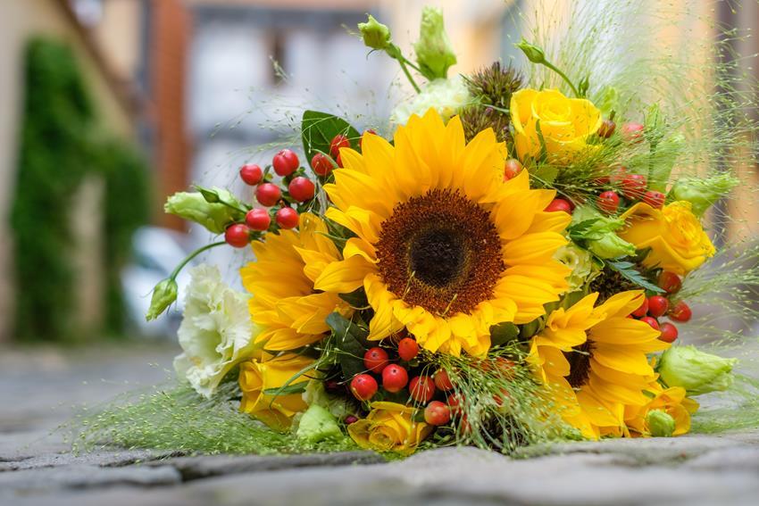 Jakie Kwiaty Dla Nauczycieli Na Rozpoczecie Roku Blog 123kwiaty Pl